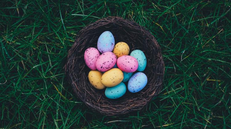 CYS Egg Hunt